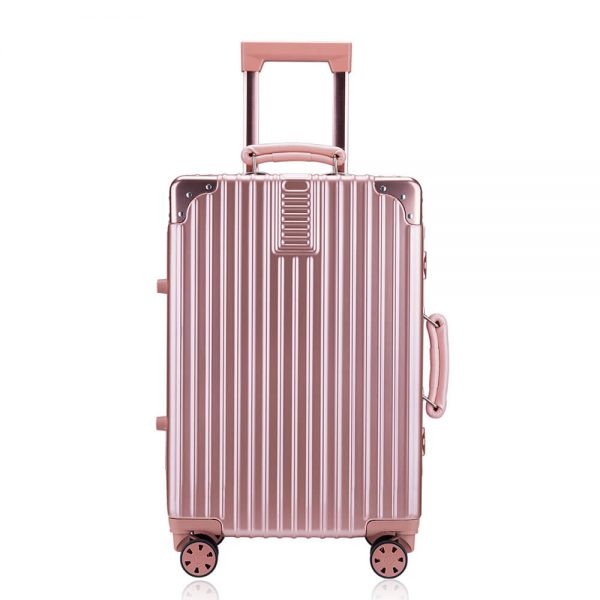 abs pc suitcase (2)